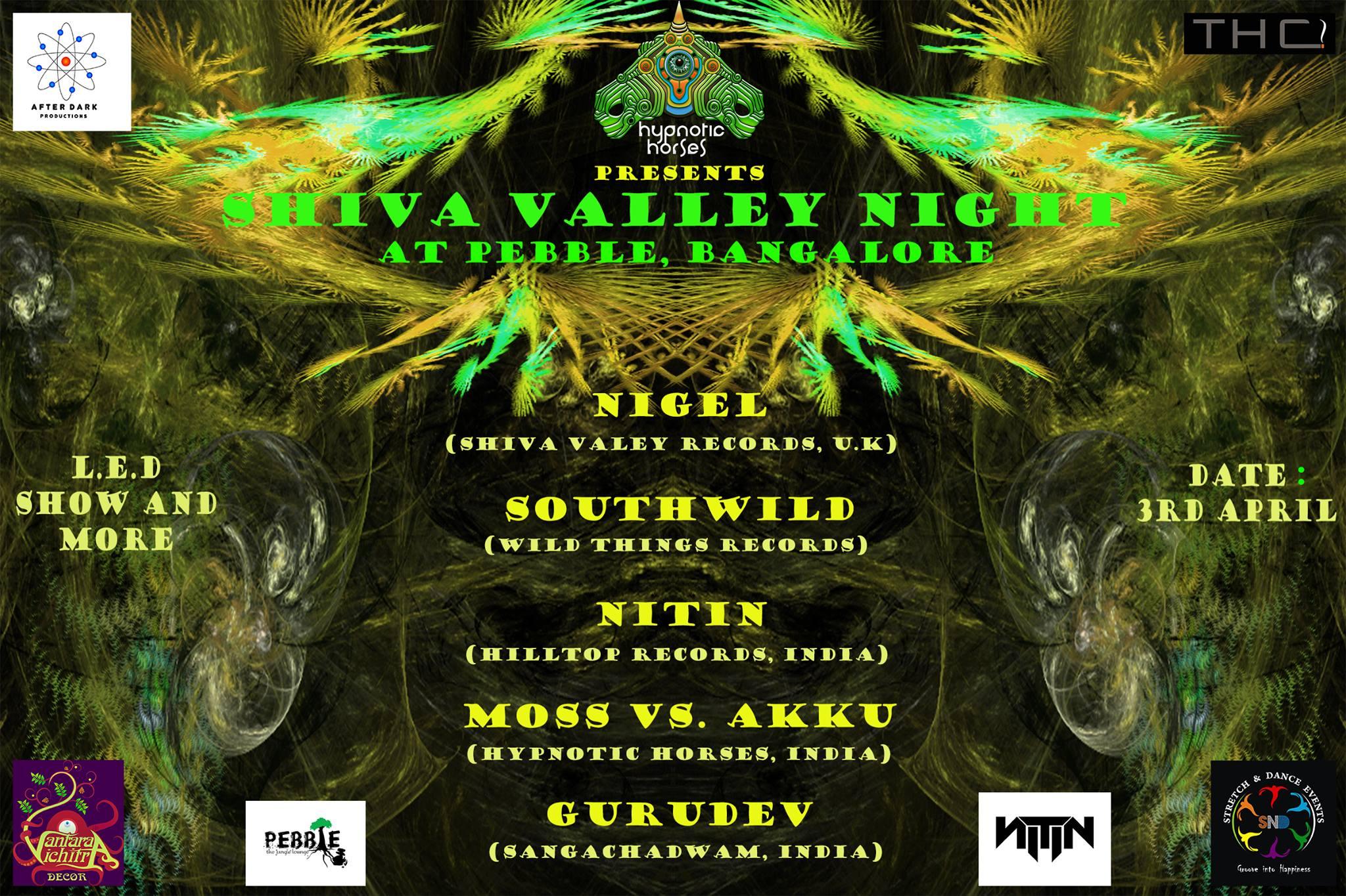 Shiva_valley_night_-_pebble